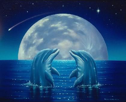 DolphinsMoonOcean