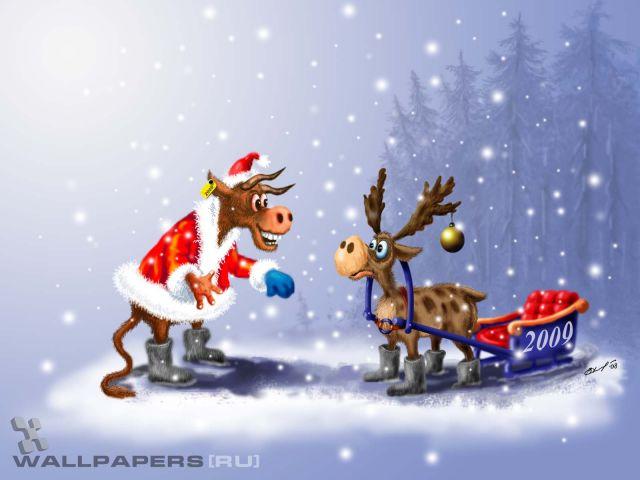 funny-christmas_640x480_59300