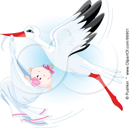66901-royalty-free-rf-clipart-illustration-of-a-beautiful-stork-delivery-a-baby-girl